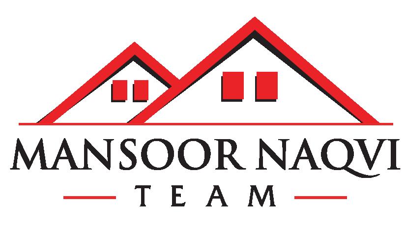 mansoor naqvi team 01 01