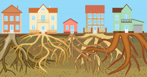 GROWING YOUR ROOTS IN CANADA-OVERSEAS SETTLEMENTS
