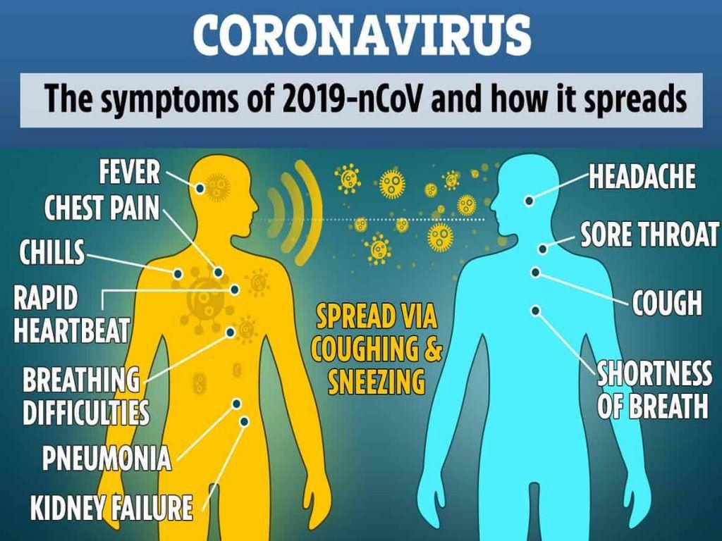 DD COMPOSITE CORONAVIRUS
